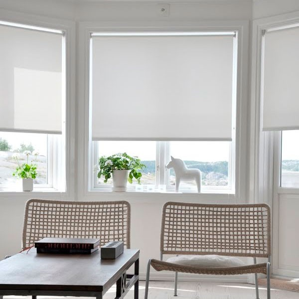 Window ShadePleated Shades Bring Color And Style To Any