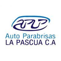 AUTO PARABRISAS LA PASCUA C A